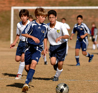Nov 8, 2008 - Fusion Gold vs. 96 Norcross Fury White